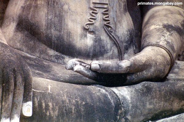 Buddha Thaï [ Jen Caldwell ]